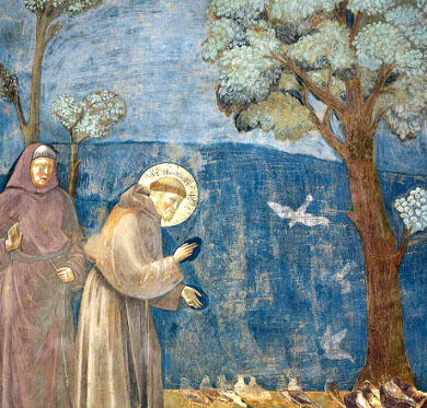 Giotto-fresko i San Francesco
